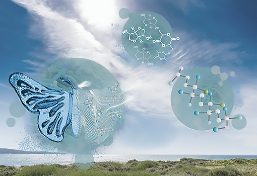 Artist's concept illustration depicts the transformation resulting from using bio-based micro-organisms as the building blocks for better polymers.