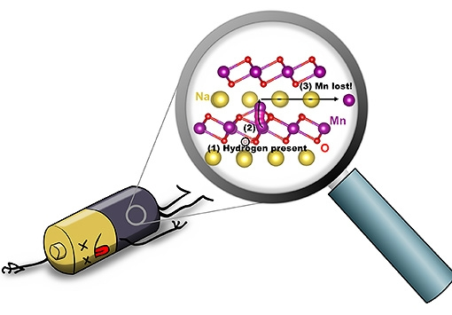 llustration depicting hydrogen-induced degradation of a sodium-ion battery: (1) When hydrogen is present (circled in black), (2) an Mn atom (purple) can move from the MnO2 layer to the Na layer (yellow); (3) Mn can then move within the Na layer, and will be lost. Illustration by Hartwin Peelaers.