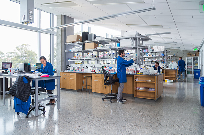 Graduate students at work in the new BioEngineering lab, where faculty and students from various disciplines share facilities.