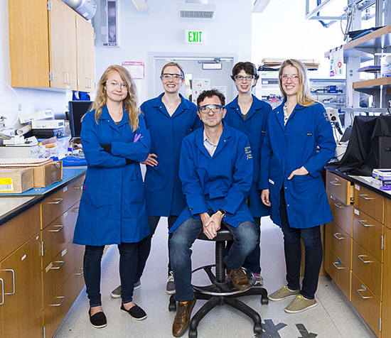 Professor Michael Chabinyc and his lab group